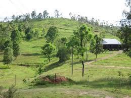 Moorina Landmark